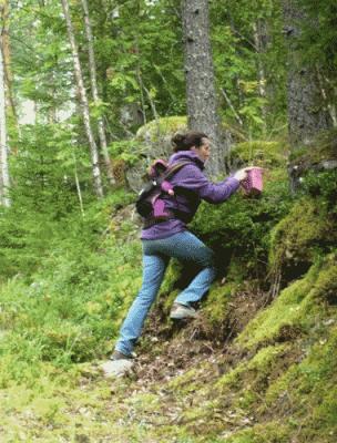 Добровольная работа на экологических фермах в Финляндии